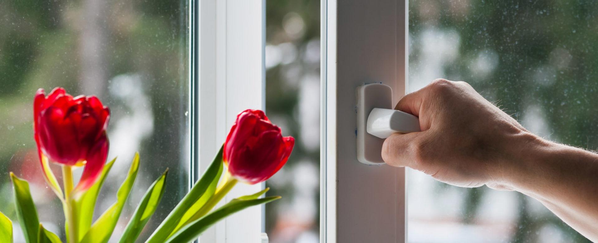 با پنجره های نو بهار مهمان خانه شما می شود